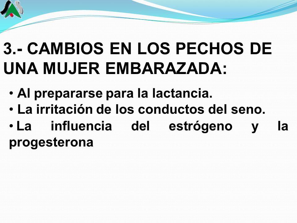 Al prepararse para la lactancia. La irritación de los conductos del seno. 3.- CAMBIOS EN LOS PECHOS DE UNA MUJER EMBARAZADA: La influencia del estróge