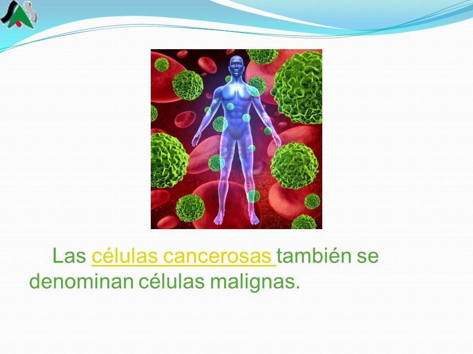 Las células cancerosas también se denominan células malignas.células cancerosas