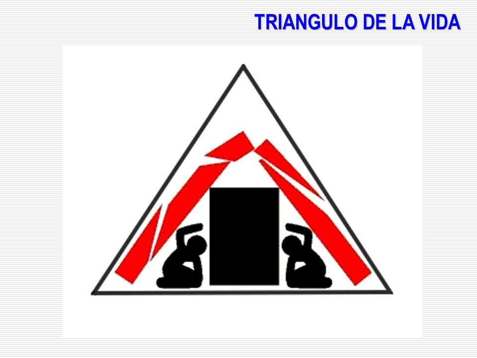 TRIANGULO DE LA VIDA