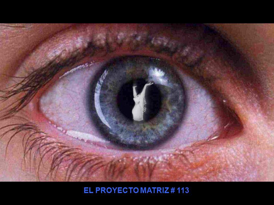 EL PROYECTO MATRIZ # 113