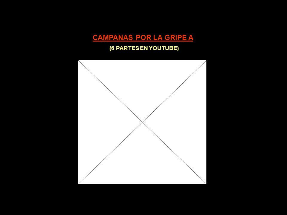 CLAVES PARA COMPRENDER EL FRAUDE DE LA GRIPE PORCINA (I)