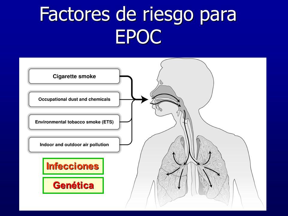 Factores de riesgo para EPOC Infecciones Genética