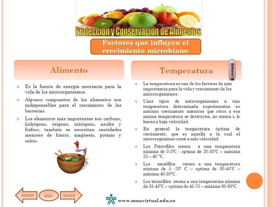 Es la fuente de energía necesaria para la vida de los microorganismos. Algunos compuestos de los alimentos son indispensables para el crecimiento de l