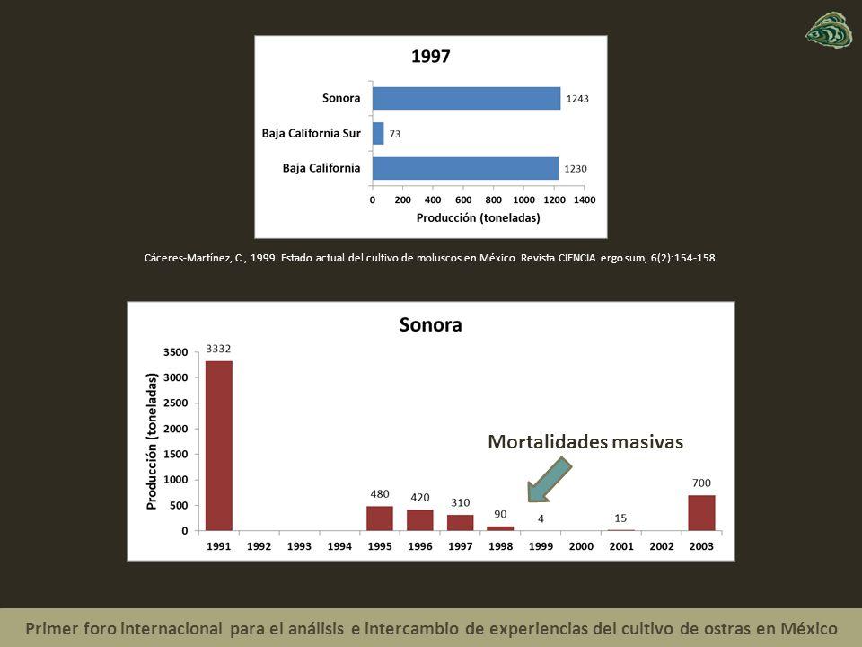 Primer foro internacional para el análisis e intercambio de experiencias del cultivo de ostras en México Mortalidades masivas Cáceres-Martínez, C., 1999.