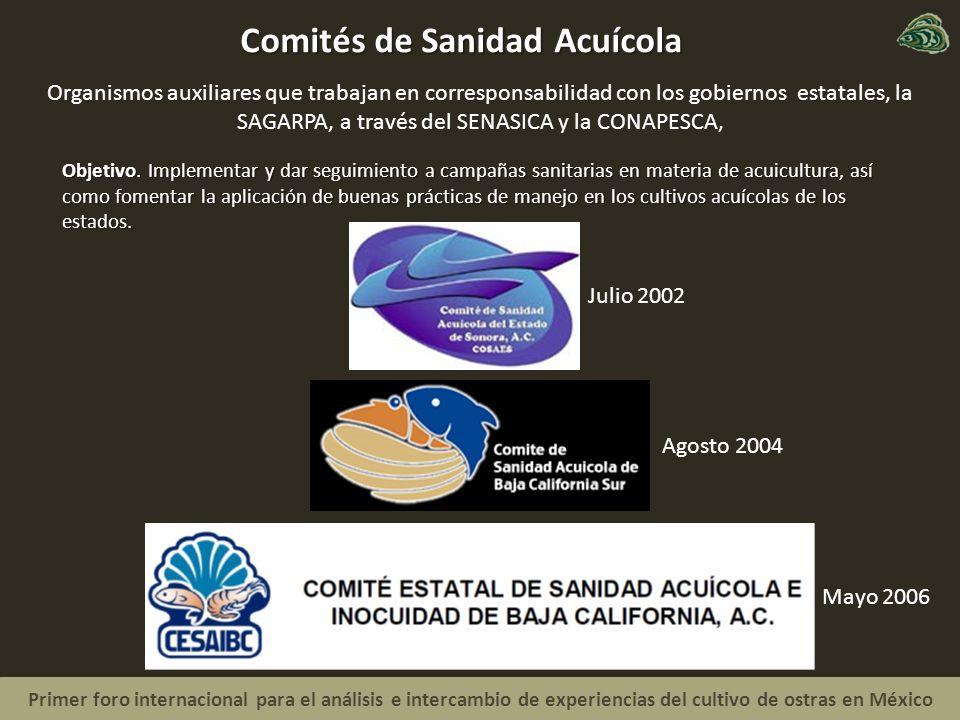 Primer foro internacional para el análisis e intercambio de experiencias del cultivo de ostras en México Comités de Sanidad Acuícola Mayo 2006 Objetivo.