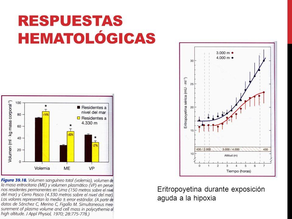 RESPUESTAS HEMATOLÓGICAS Eritropoyetina durante exposición aguda a la hipoxia