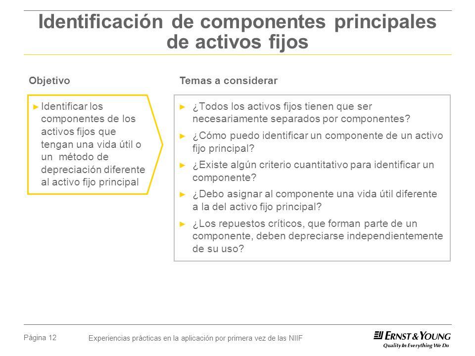 Experiencias prácticas en la aplicación por primera vez de las NIIF Página 12 Identificación de componentes principales de activos fijos ¿Todos los ac