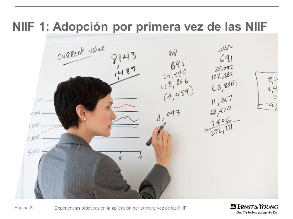 Experiencias prácticas en la aplicación por primera vez de las NIIF Página 14 Depreciación de activos fijos No necesariamente se debe utilizar el método de línea recta.