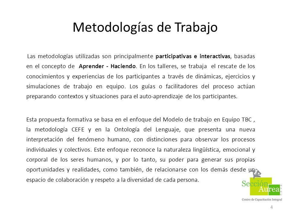 Metodologías de Trabajo Las metodologías utilizadas son principalmente participativas e interactivas, basadas en el concepto de Aprender - Haciendo. E