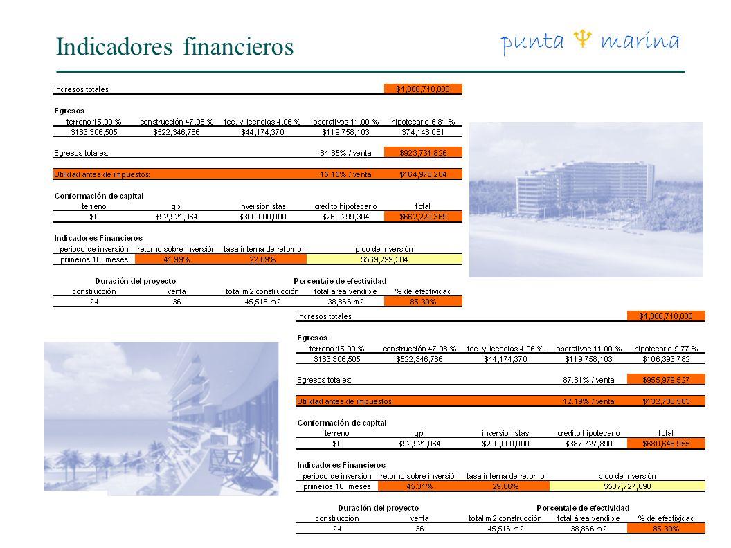 21 punta marina Indicadores financieros