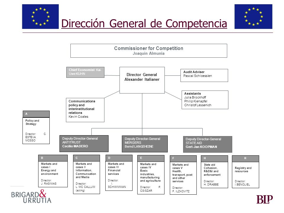 Dirección General de Competencia Commissioner for Competition Joaquín Almunia Director General Alexander Italianer Chief Economist Kai- Uwe KUHN Communications policy and interinstitutional relations Kevin Coates Policy and Strategy Director: C.