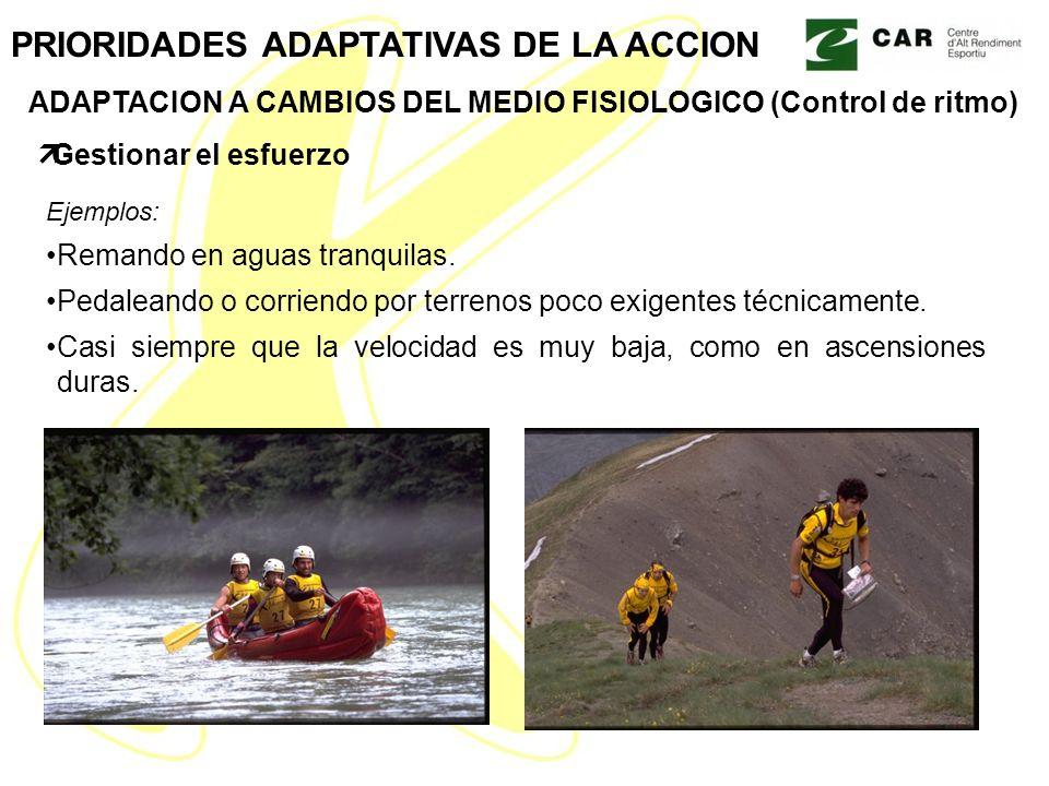 Ejemplos: Remando en aguas tranquilas. Pedaleando o corriendo por terrenos poco exigentes técnicamente. Casi siempre que la velocidad es muy baja, com