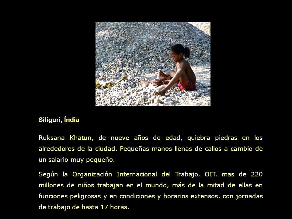 Tegucigalpa, Honduras Los buitres y los niños disputan los restos que encuentran en los basurales en la capital hondureña.