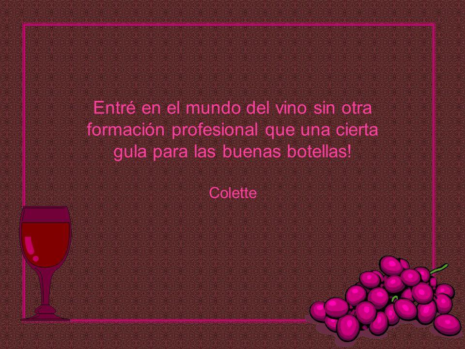 Entré en el mundo del vino sin otra formación profesional que una cierta gula para las buenas botellas.