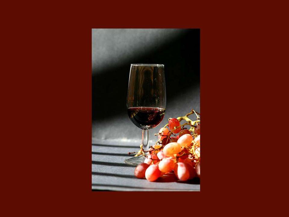 Entré en el mundo del vino sin otra formación profesional que una cierta gula para las buenas botellas! Colette