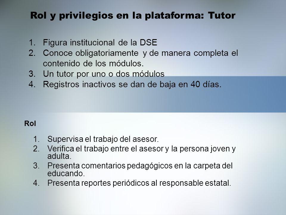 1.Figura institucional de la DSE 2.Conoce obligatoriamente y de manera completa el contenido de los módulos. 3.Un tutor por uno o dos módulos 4.Regist