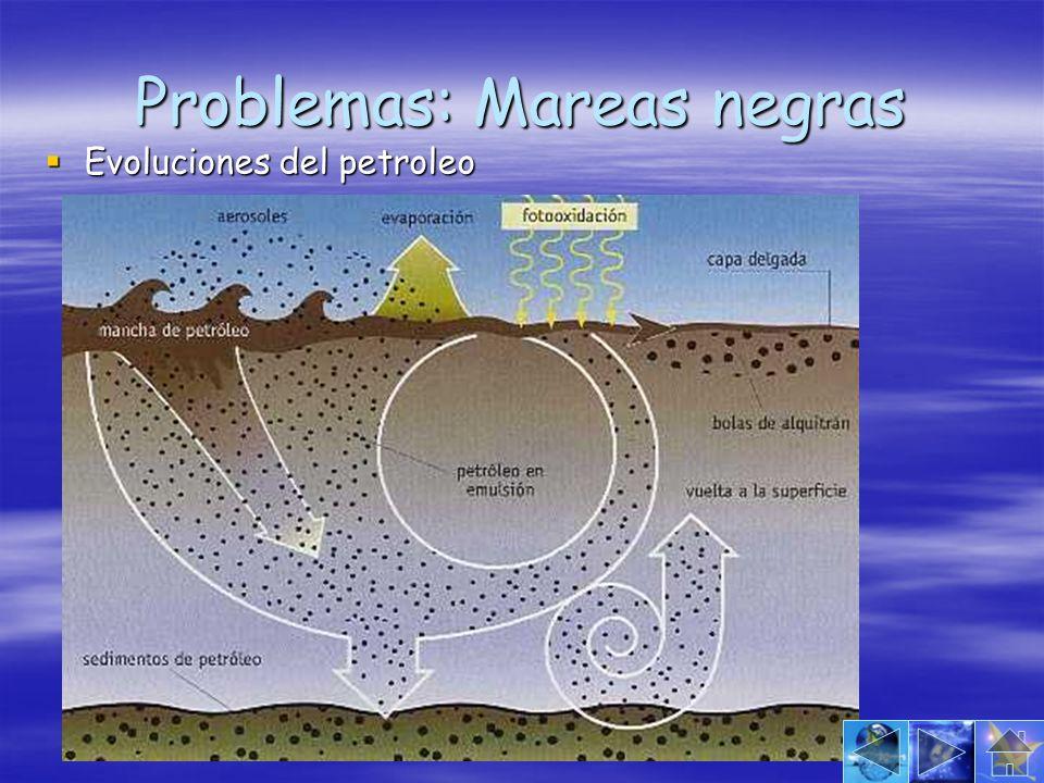 Problemas: Mareas negras Evoluciones del petroleo Evoluciones del petroleo