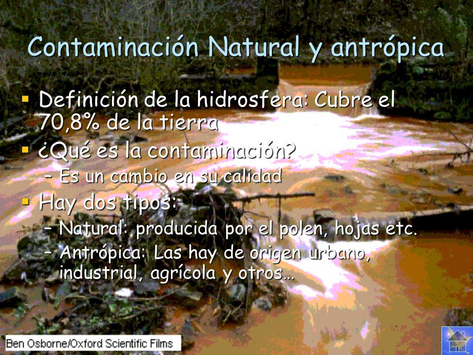 Tipos de contaminantes Hay tres tipos de contaminantes: Biológicos: Biológicos: Microorganismos patógenos Microorganismos patógenos Desechos orgánicos Desechos orgánicos Sedimentos y materiales suspendidos Sedimentos y materiales suspendidos