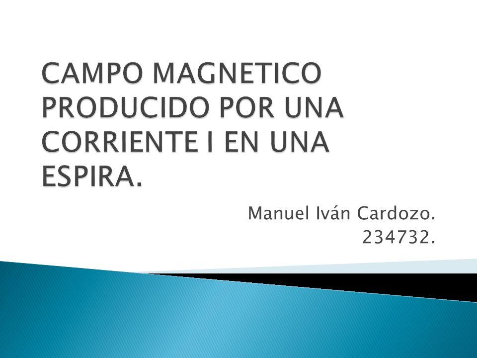 Manuel Iván Cardozo. 234732.