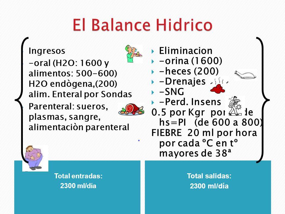 Total entradas: 2300 ml/día Total salidas: 2300 ml/día Ingresos -oral (H2O: 1600 y alimentos: 500-600) H2O endògena,(200) alim. Enteral por Sondas Par