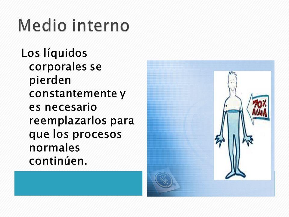 Los líquidos corporales se pierden constantemente y es necesario reemplazarlos para que los procesos normales continúen.