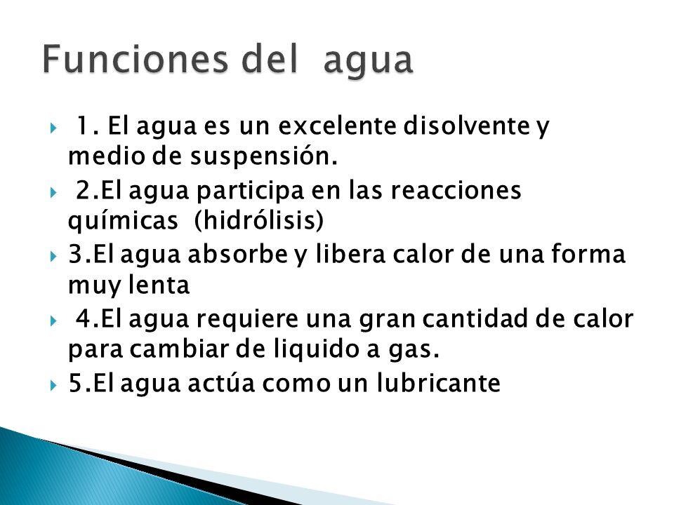 1. El agua es un excelente disolvente y medio de suspensión. 2.El agua participa en las reacciones químicas (hidrólisis) 3.El agua absorbe y libera ca