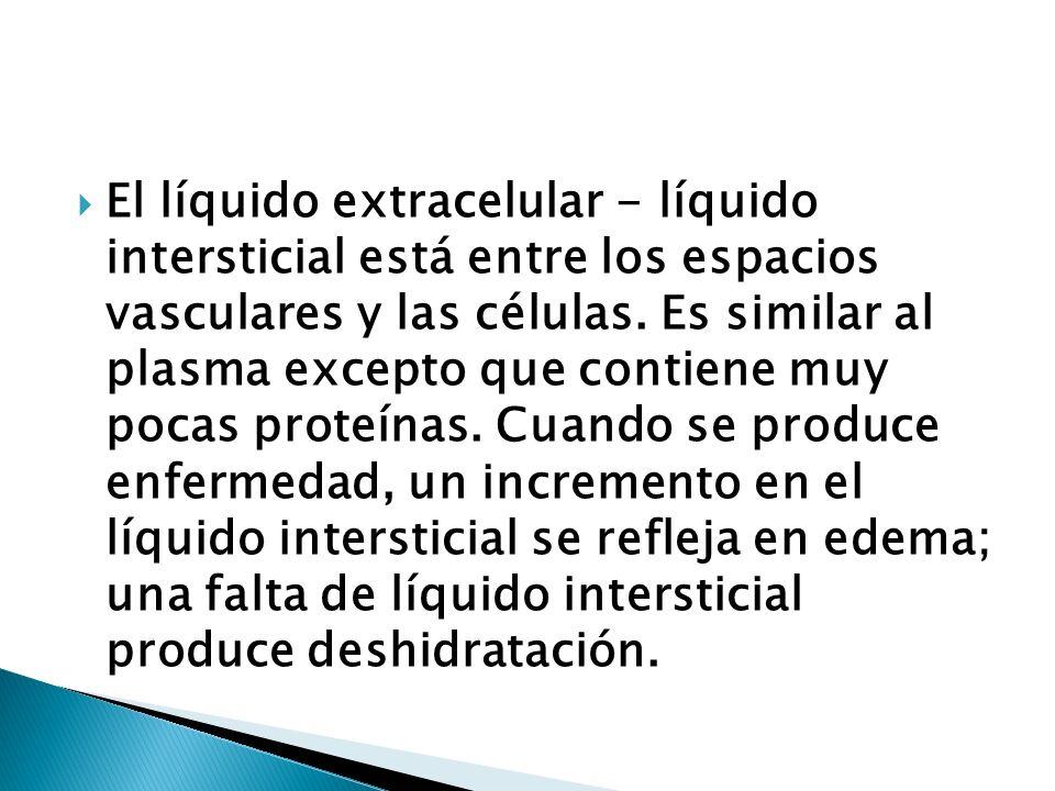 El líquido extracelular - líquido intersticial está entre los espacios vasculares y las células. Es similar al plasma excepto que contiene muy pocas p