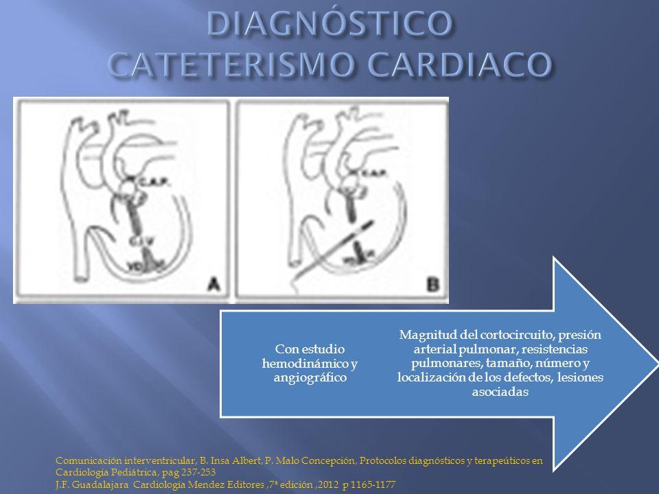 Magnitud del cortocircuito, presión arterial pulmonar, resistencias pulmonares, tamaño, número y localización de los defectos, lesiones asociadas Con