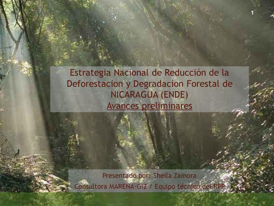 Estrategia Nacional de Reducción de la Deforestacion y Degradacion Forestal de NICARAGUA (ENDE) Avances preliminares Presentado por: Sheila Zamora Con