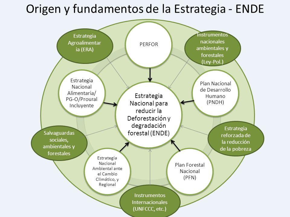 Origen y fundamentos de la Estrategia - ENDE Estrategia Agroalimentar ia (ERA) Instrumentos nacionales ambientales y forestales (Ley-Pol.) Salvaguarda