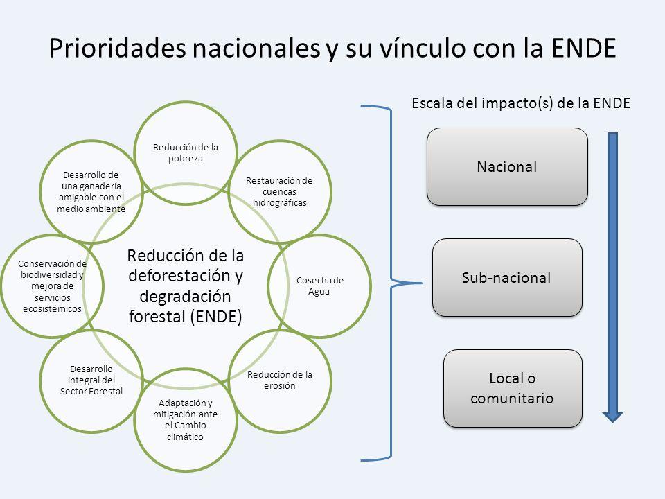 Prioridades nacionales y su vínculo con la ENDE Nacional Sub-nacional Local o comunitario Escala del impacto(s) de la ENDE