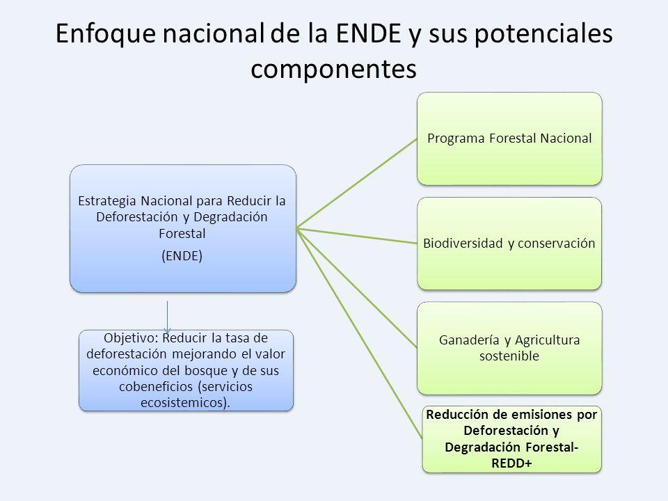 Enfoque nacional de la ENDE y sus potenciales componentes Objetivo: Reducir la tasa de deforestación mejorando el valor económico del bosque y de sus
