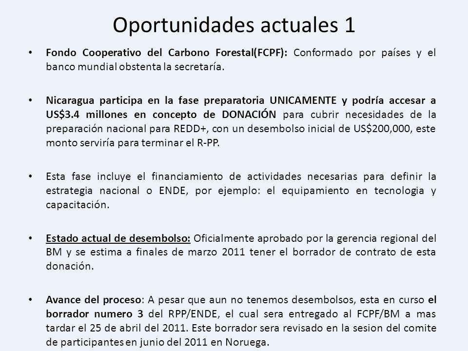 Oportunidades actuales 1 Fondo Cooperativo del Carbono Forestal(FCPF): Conformado por países y el banco mundial obstenta la secretaría. Nicaragua part