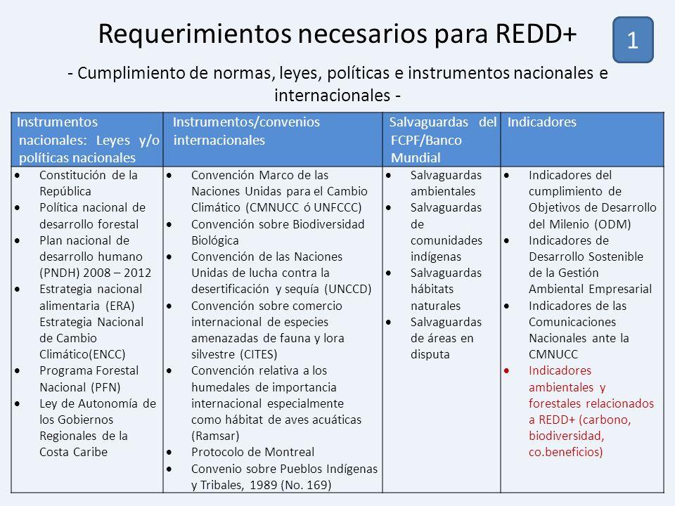 Instrumentos nacionales: Leyes y/o políticas nacionales Instrumentos/convenios internacionales Salvaguardas del FCPF/Banco Mundial Indicadores Constit