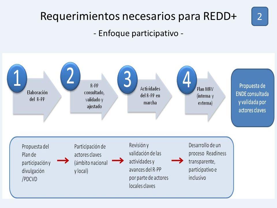 2 Requerimientos necesarios para REDD+ - Enfoque participativo -