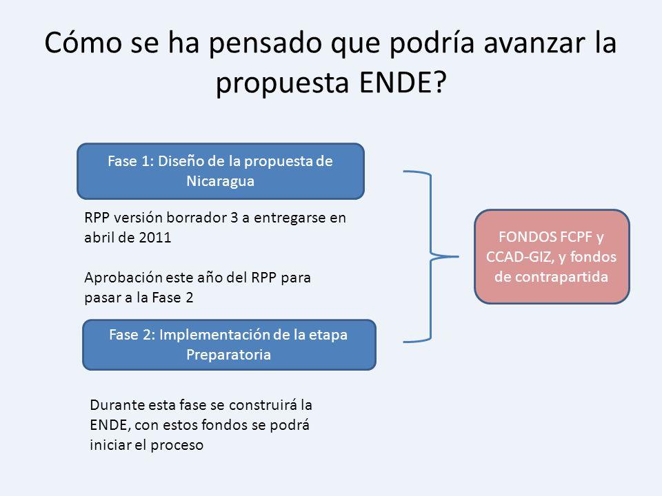 Cómo se ha pensado que podría avanzar la propuesta ENDE? Fase 1: Diseño de la propuesta de Nicaragua Fase 2: Implementación de la etapa Preparatoria F