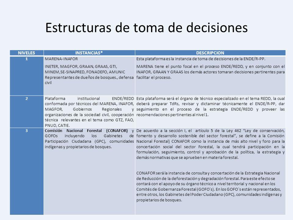 Estructuras de toma de decisiones NIVELESINSTANCIAS*DESCRIPCION 1 MARENA-INAFOR INETER, MAGFOR, GRAAN, GRAAS, GTI, MINEM,SE-SINAPRED, FONADEFO, AMUNIC