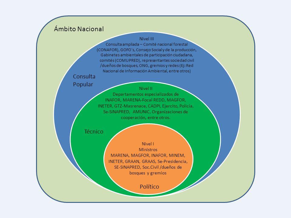 Nivel III Consulta ampliada – Comité nacional forestal (CONAFOR), GOFO´s, Consejo Social y de la producción, Gabinetes ambientales de participación ci