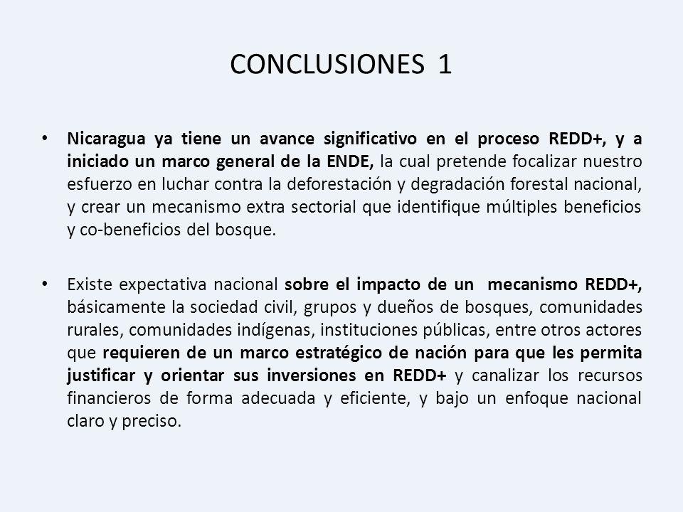 CONCLUSIONES 1 Nicaragua ya tiene un avance significativo en el proceso REDD+, y a iniciado un marco general de la ENDE, la cual pretende focalizar nu