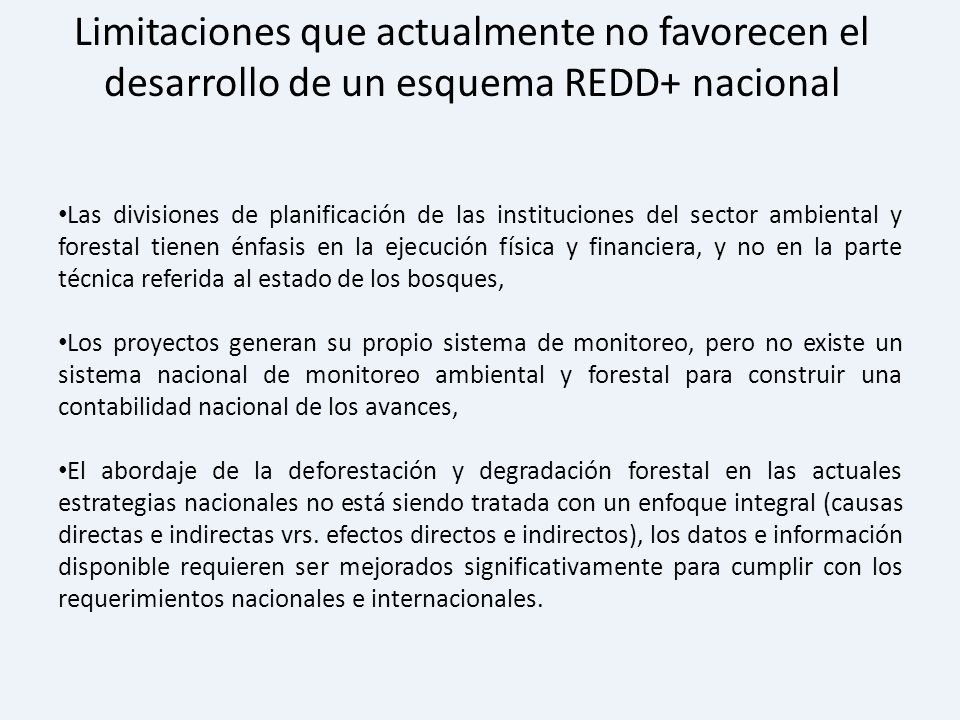 Las divisiones de planificación de las instituciones del sector ambiental y forestal tienen énfasis en la ejecución física y financiera, y no en la pa