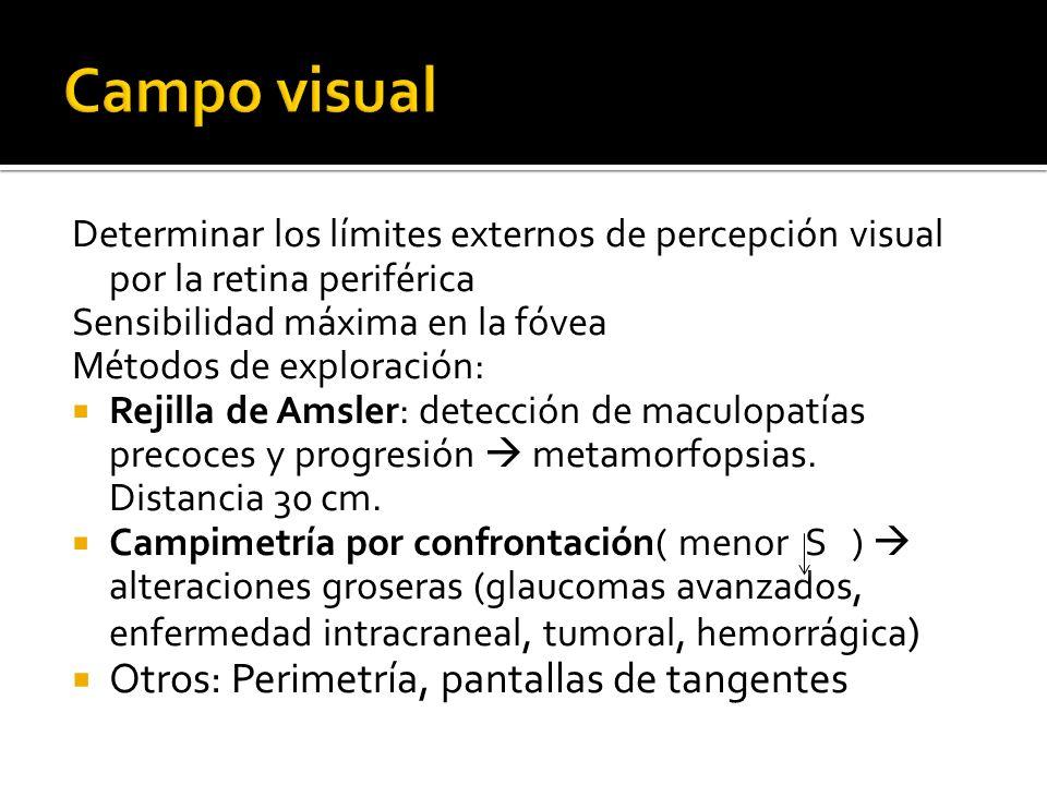 Determinar los límites externos de percepción visual por la retina periférica Sensibilidad máxima en la fóvea Métodos de exploración: Rejilla de Amsler: detección de maculopatías precoces y progresión metamorfopsias.