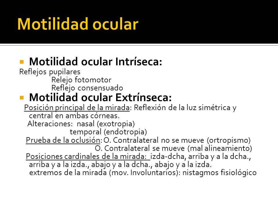 Motilidad ocular Intríseca: Reflejos pupilares Relejo fotomotor Reflejo consensuado Motilidad ocular Extrínseca: Posición principal de la mirada: Reflexión de la luz simétrica y central en ambas córneas.