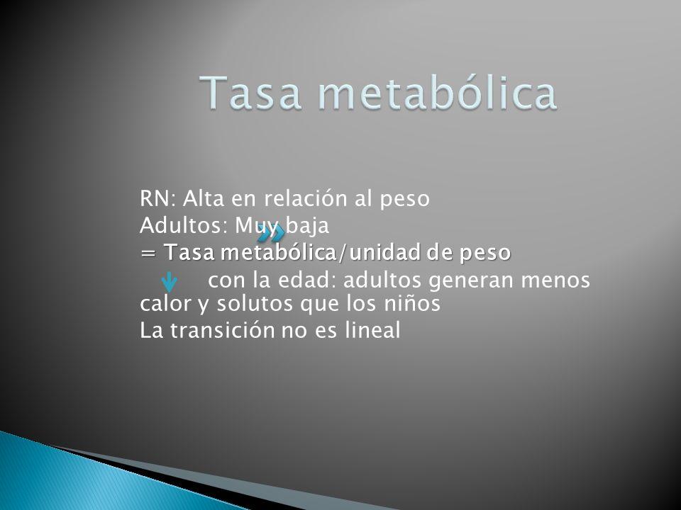 RN: Alta en relación al peso Adultos: Muy baja = Tasa metabólica/unidad de peso con la edad: adultos generan menos calor y solutos que los niños La tr