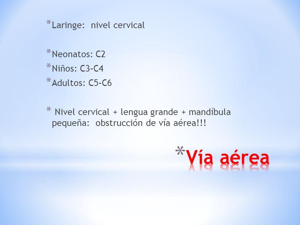 * Laringe: nivel cervical * Neonatos: C2 * Niños: C3-C4 * Adultos: C5-C6 * Nivel cervical + lengua grande + mandíbula pequeña: obstrucción de vía aérea!!!