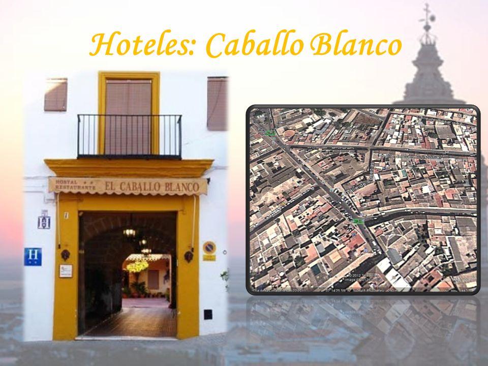 Hoteles: Caballo Blanco
