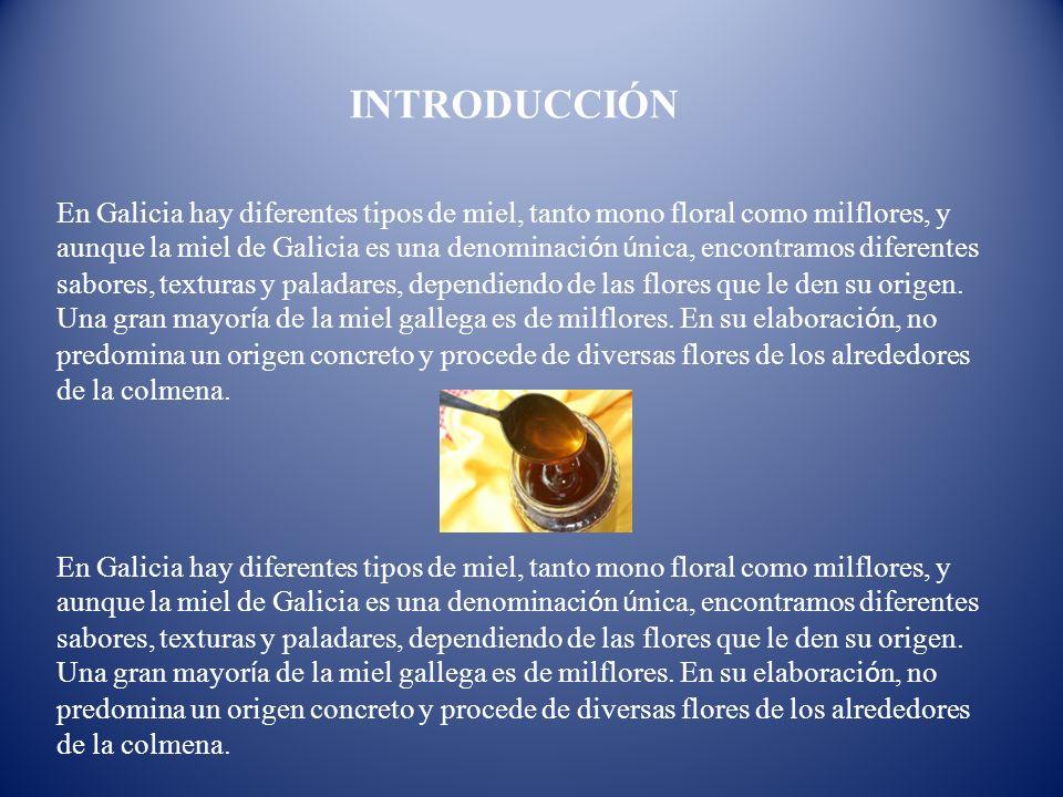 INTRODUCCIÓN En Galicia hay diferentes tipos de miel, tanto mono floral como milflores, y aunque la miel de Galicia es una denominaci ó n ú nica, enco