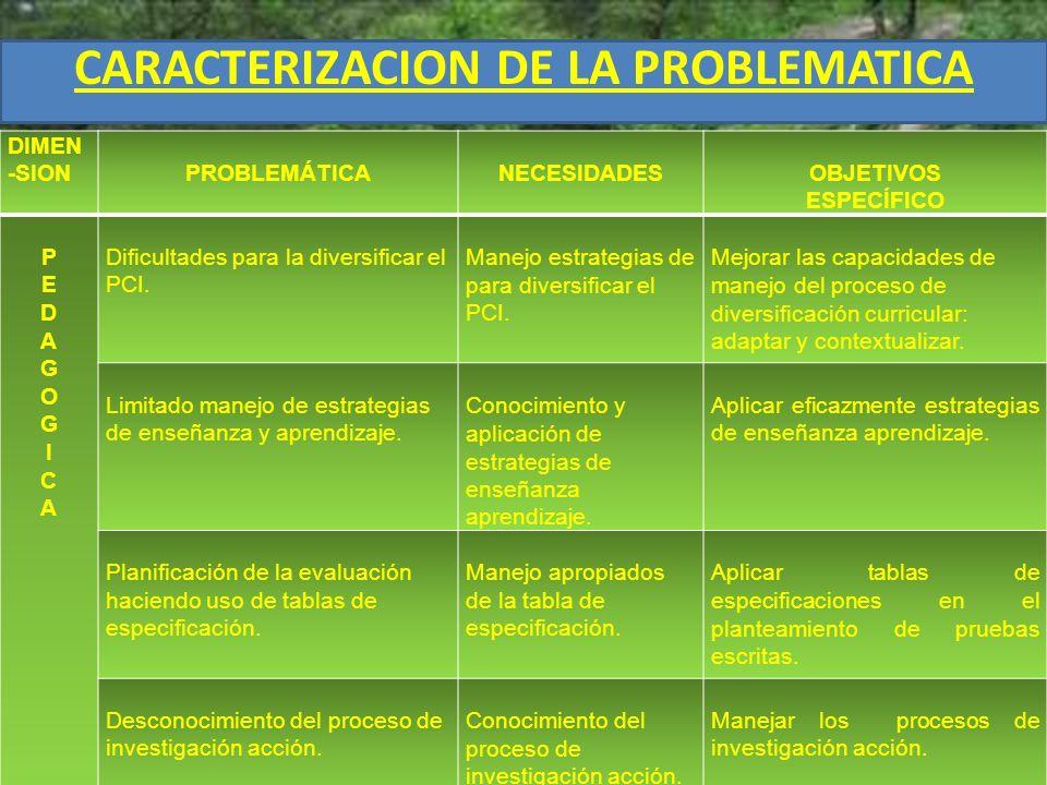 CARACTERIZACION DE LA PROBLEMATICA DIMEN -SIONPROBLEMÁTICANECESIDADESOBJETIVOS ESPECÍFICO PEDAGOGICAPEDAGOGICA Dificultades para la diversificar el PC