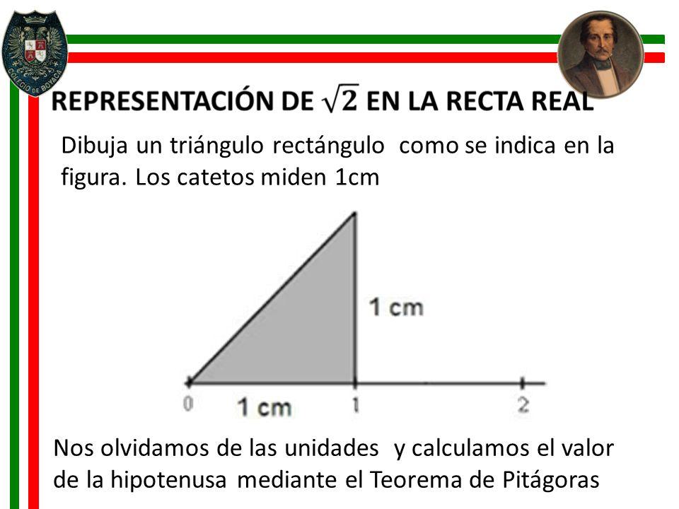 Dibuja un triángulo rectángulo como se indica en la figura. Los catetos miden 1cm Nos olvidamos de las unidades y calculamos el valor de la hipotenusa