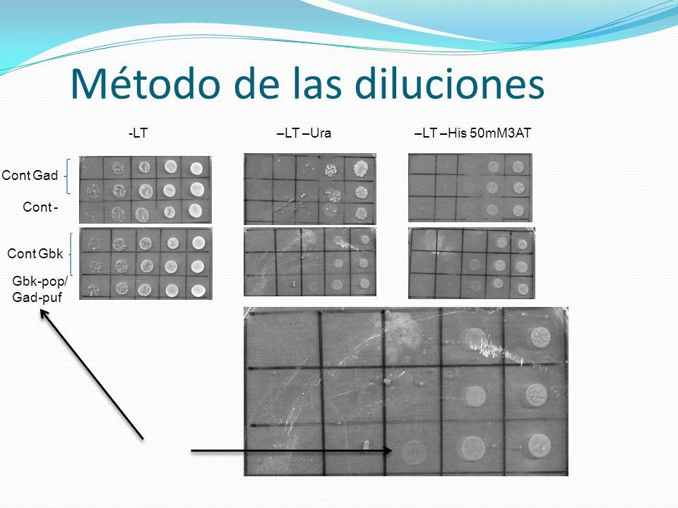 Método de las diluciones Cont Gad Cont - Cont Gbk Gbk-pop/ Gad-puf -LT–LT –Ura–LT –His 50mM3AT