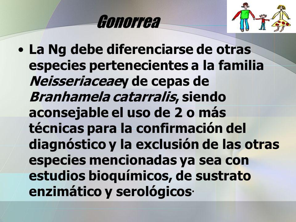 Gonorrea La Ng debe diferenciarse de otras especies pertenecientes a la familia Neisseriaceaey de cepas de Branhamela catarralis, siendo aconsejable e